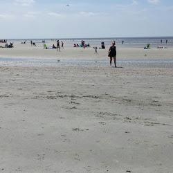 East Beach's profile photo