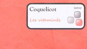 nuancier-les-betons-de-clara-coquelicot-collection-les-vitamines-decoration-interieure-enduit-decoratif.jpg