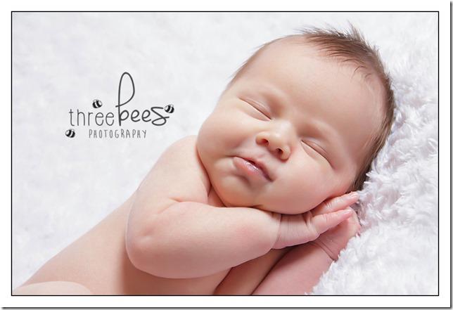 threebees-22