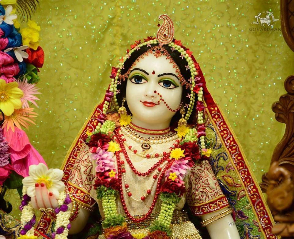 ISKCON GEV Deity Darshan 20 Jan 2017 (12)