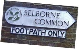 street sign S