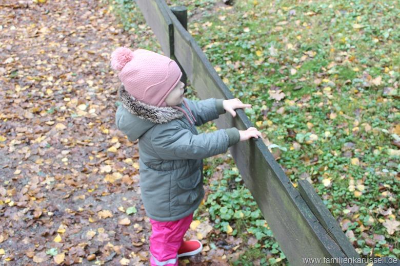 Tierpark_Gangelt