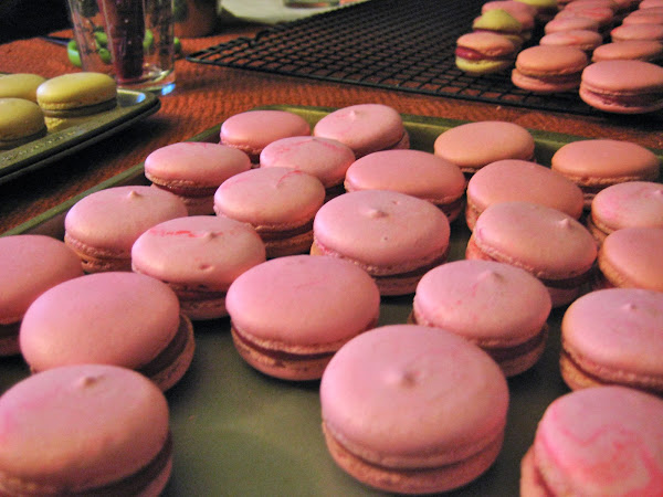 Cranberry macarons - finished product