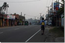 Ланка (288)