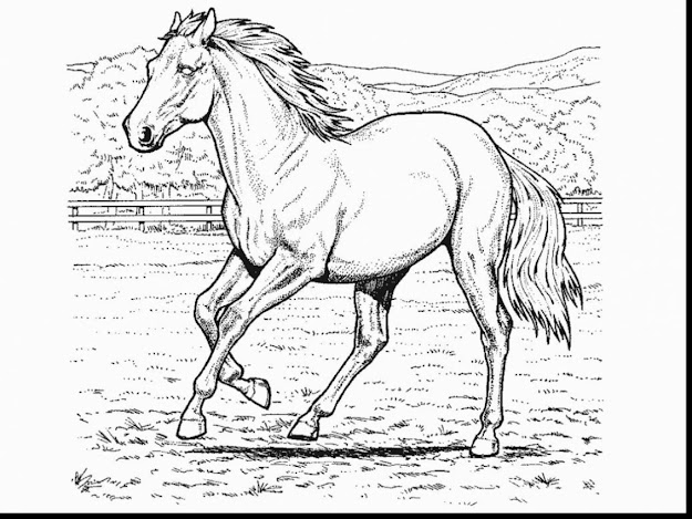 Magnificent Horse Coloring Pages With Horse Coloring Page And Horse  Coloring Pages Free Printable
