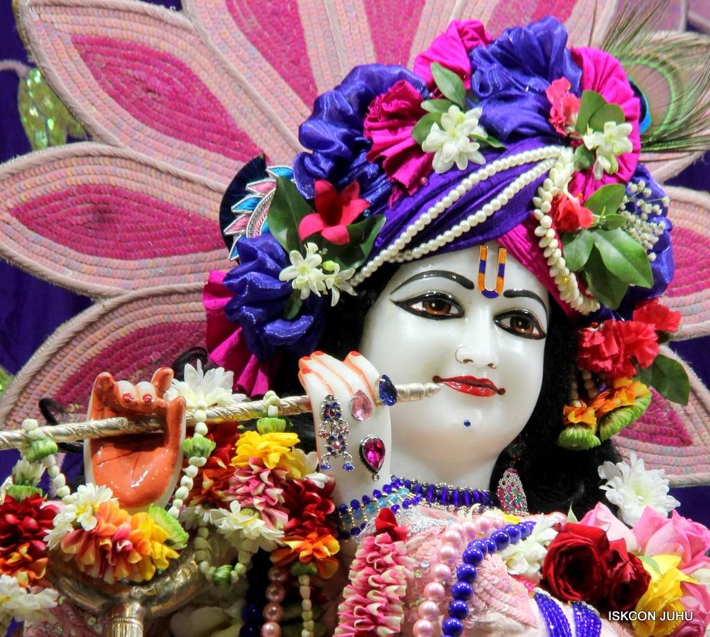 ISKCON Juhu Sringar Deity Darshan 5 Jan 2017 (14)
