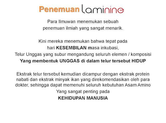 produk laminine Page 22 Laminine Untuk Multiple Sclerosis (MS)