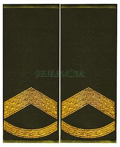 Погони-муфти  ЗСУ Штаб-сержант повсякденні
