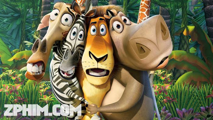 Ảnh trong phim Cuộc Phiêu Lưu Đến Madagascar - Madagascar 1