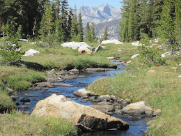 Stream flowing from the outlet of Obelisk Lake.