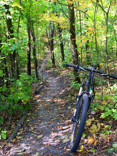 Great mountain biking on the mountain bike course this week. Fall riding!