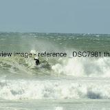 _DSC7981.thumb.jpg