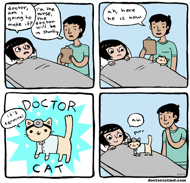 Doctor Cat MD - It's Terminal