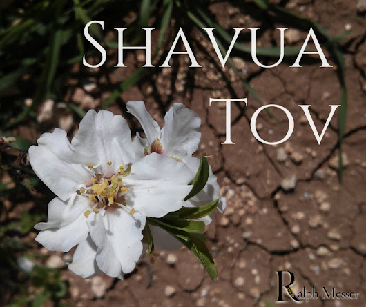 Shavua means week and tov means good this is a hebrew photo m4hsunfo