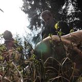 2014-04-13 - Waldführung am kleinen Waldstein (von Uwe Look) - DSC_0421.JPG
