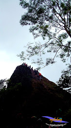 Gunung Munara fuji 8 Maret 2015 46