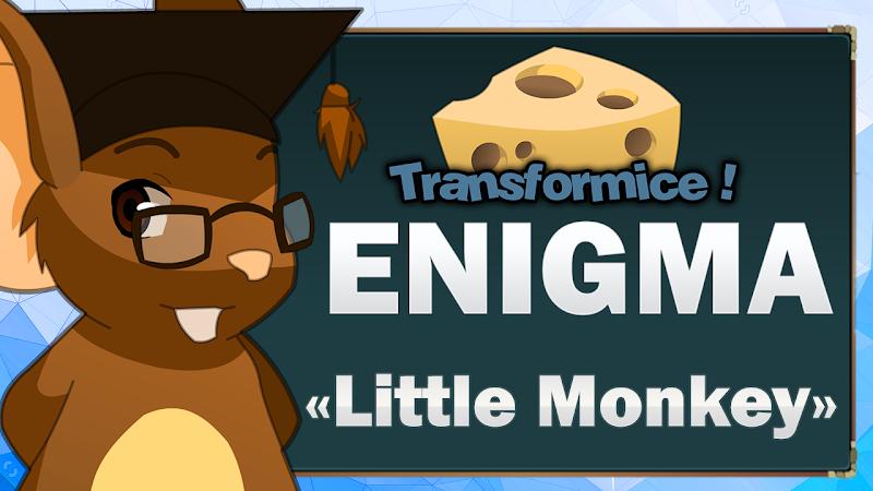 enigma-little-monkey