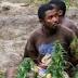 Operação destrói roças de maconhae prende traficantes em Presidente Juscelino