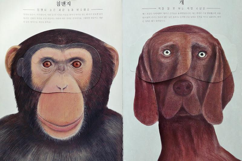 동물들은 어떻게 세상을 볼까요?