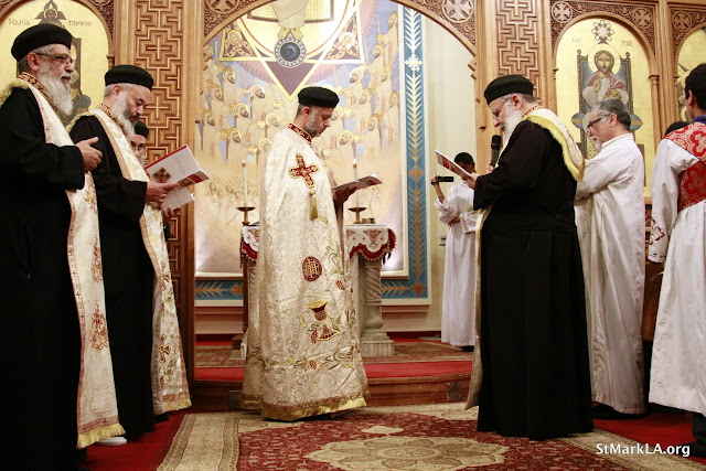 Rites of receiving Fr. Cyril Gorgy - _MG_1011.JPG
