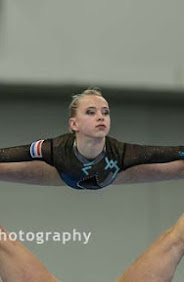 Han Balk Fantastic Gymnastics 2015-2630.jpg