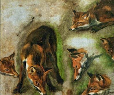 [foxes2.jpg]