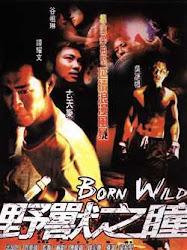 Born Wild - Vua đấm bốc - Dã chiếng giang hồ