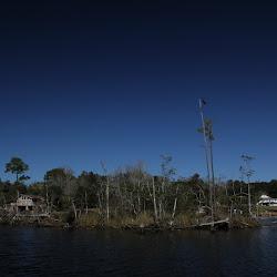 Fowl Marsh from Boat Feb3 2013 126
