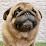 八木野太郎's profile photo