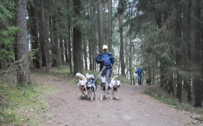 20140101 Neujahrsspaziergang im Waldnaabtal - DSC_9796.JPG