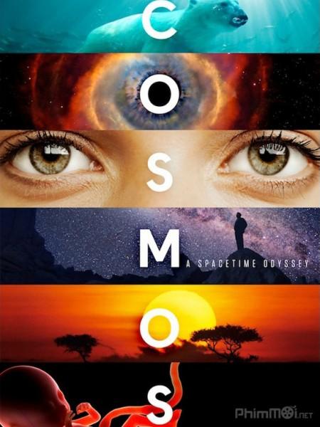 Vũ trụ kỳ diệu (Vũ trụ: Cuộc du hành không gian-Thời gian) - Cosmos: A Space-Time Odyssey