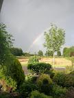 Dankzij het weer, dit jaar helaas géén jonge ooievaars!!!!!