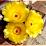 Vanitha Raj's profile photo