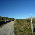 8km to the Summit (265493)