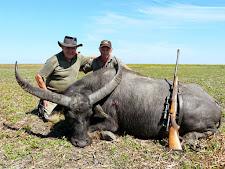 water-buffalo-hunting-12.jpg