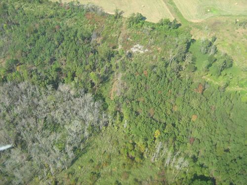 Aerial Shots Of Anderson Creek Hunting Preserve - tnIMG_0379.jpg