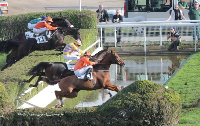 Photos Auteuil 8-11-2015 (48h de l'obstacle) IMG_7025