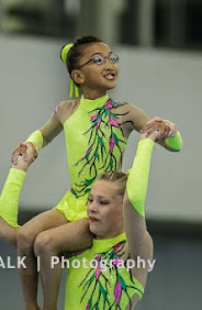 Han Balk Fantastic Gymnastics 2015-2209.jpg