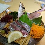 Mackerel sashimi Zauo self-fishing restaurant in Shinjuku, Tokyo - Japan in Shinjuku, Tokyo, Japan