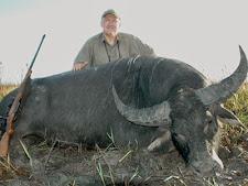 water_buffalo_hunting_14L.jpg