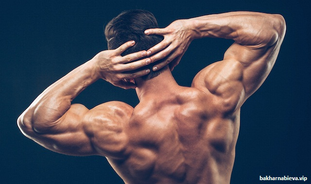 Exercises that will Help You Build Shoulders Like Boulders