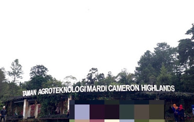 Agrotechonoly Park in MARDI Cameron Highland
