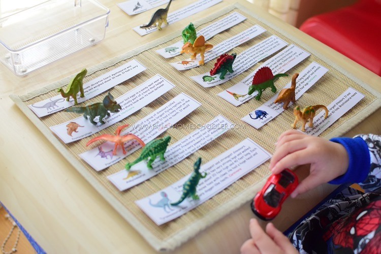 DINOSAUR SORTING ACTIVITY