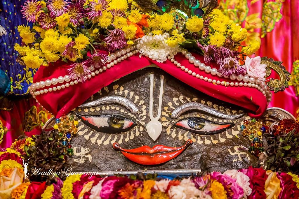 ISKCON Mayapur Deity Darshan 20 Jan 2017 (42)