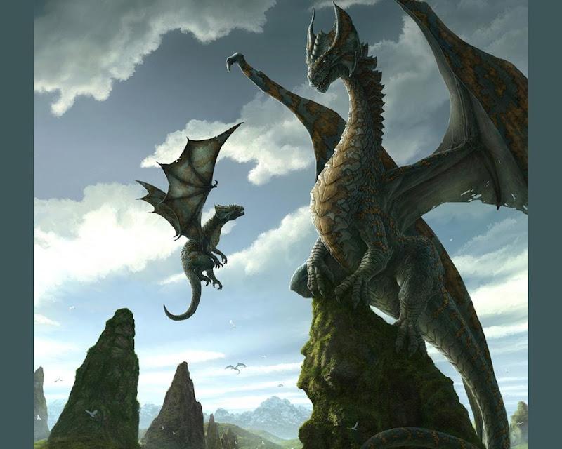 Family Of Dragons, Spirit Companion 1