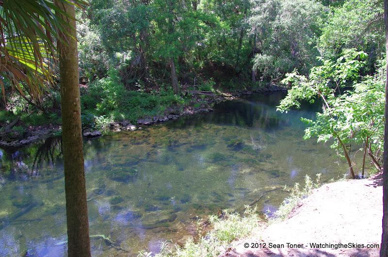 04-04-12 Hillsborough River State Park - IMGP9678.JPG