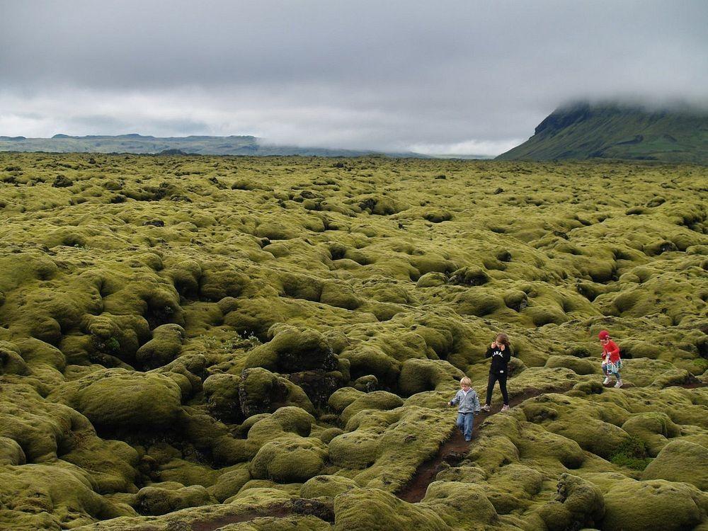 mossy-lava-fields-iceland-7