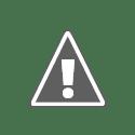 Выгоды комментариев на DoFollow блогах