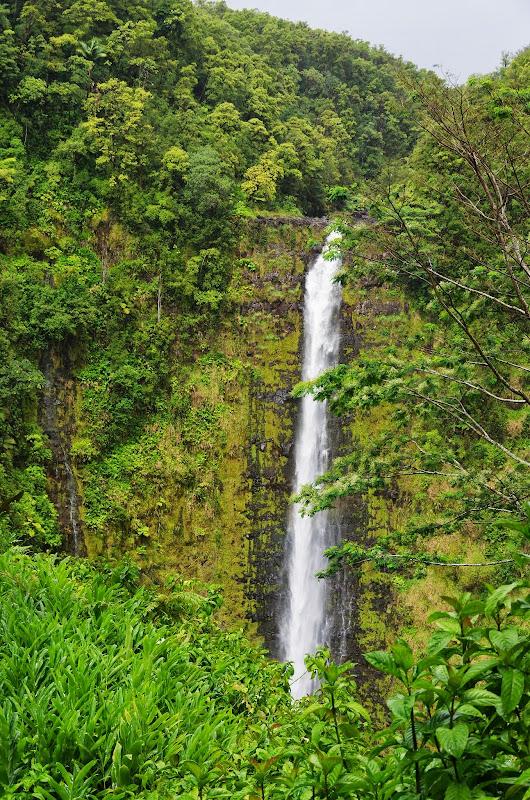 06-23-13 Big Island Waterfalls, Travel to Kauai - IMGP8864.JPG