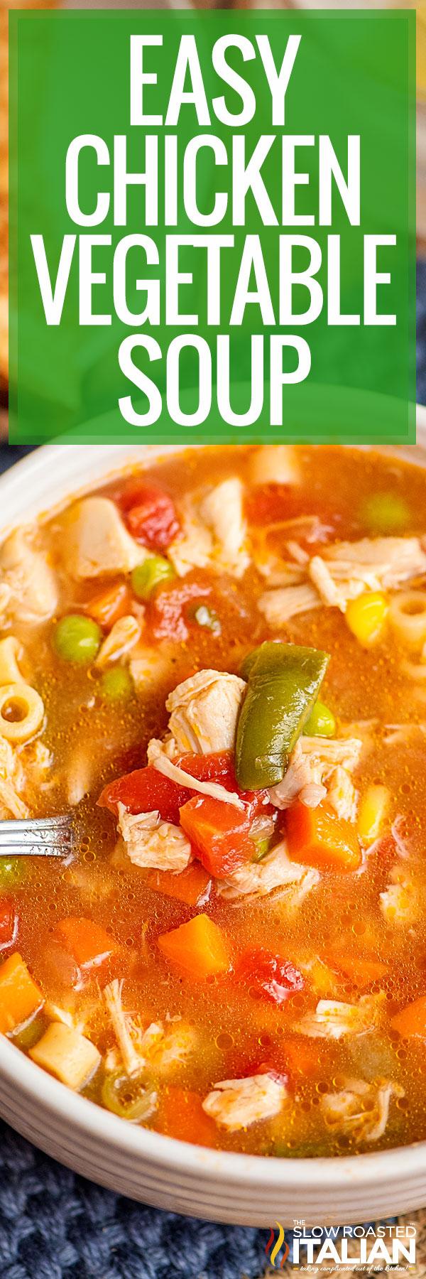 Chicken Vegetable Soup Recipe Closeup